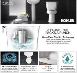 describing wellworth flushing features