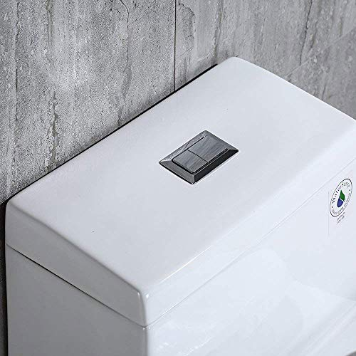 WoodBridge Dual Flush Toilet, Rectangle Button, Comfortable Height and Siphon Flushing