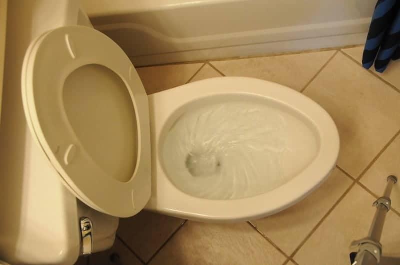 Toilet Flushes Twice