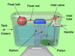 standard single flush siphon system explained